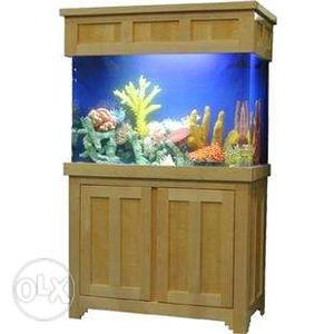 Aquarium size 2ft by 1ft by 1ft 2inch
