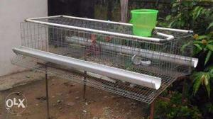 Hightech hen cage. Automatic drinking water.