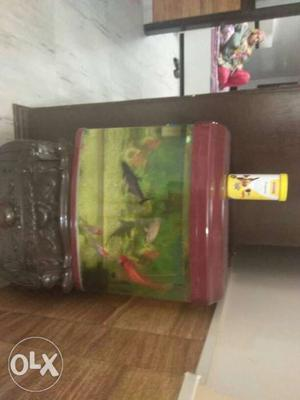 This aquarium is without fish did you want to buy