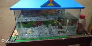 2 fishtanks (1 big and 1 small) with roofs,