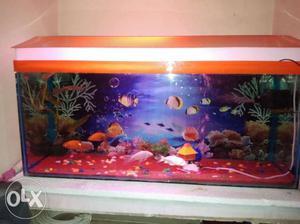 3feet fish tank new 5 days ago to buy it Crystal