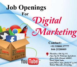 Walk In interview For Digital Marketing,SEO Analyst Chennai