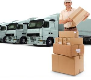 Packers and Movers in New Delhi Delhi