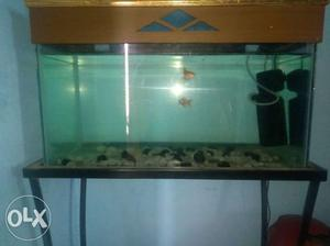 18 inch by 12inch aquarium with motor and brown