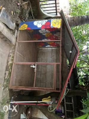 Dog cage 6 feet by 6 feet big cage for sell
