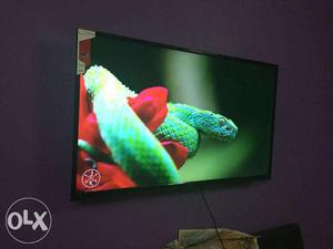 "32"" Full Hd Display Brand New Sony Panel Led Tv Just For"