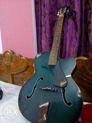 Hobner Guitar only learned guitar for two months