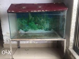Fish tank with stand shed n sand for plant tank
