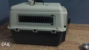 Animal box medium size