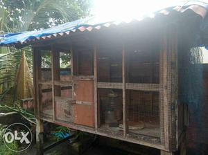 2 used cages for sale at Thirumala Trivandrum