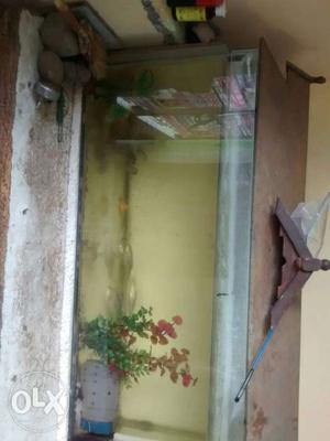Fish tank with fishes, 2 SK gold fish,3 gold