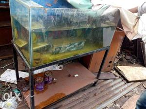 Fish tank with stand for restaurant use home use