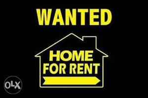 Looking for a single bedroom house for rent in