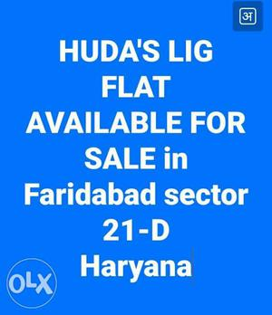Huda's Lig Flat Available For Sale In Faridabad Sector Text