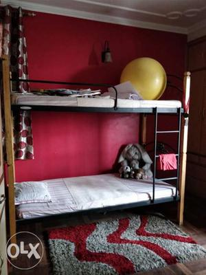 Rubber Wood Bunkbed