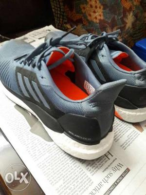 "Adidas brand new shoe ""solar glide st"""