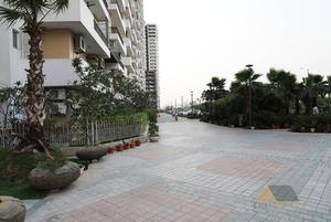 Amazing 3 BHK Flats in Ace City @ PSF, Greater Noida