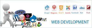 Leading Ecommerce Website Design In Bangalore