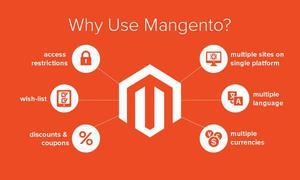 Magento Website Development Company Noida, India