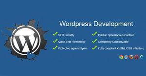 wordpress training in delhi