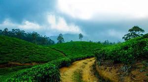 Witness the Beauty of Kerala with Kerala Tourism Enterprises