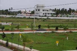 250 sq yds plots for sale in tdi city in mohali,sector-116