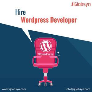 Hire wordpress Developer From Leading Company