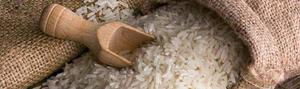 Buy Rice Online in Bulk Directly From Rice Mills Through