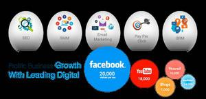Digital Marketing Service in Delhi NCR | SMO | SEO | PPC