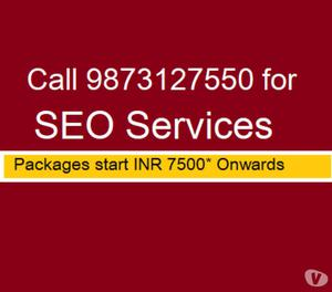 Get SEO Services for Local Business  New Delhi