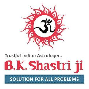 Get The Famous Astrologer in India