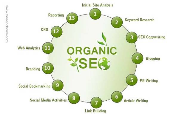 Guaranteed Organic SEO Services India