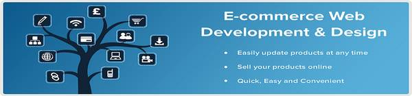Ecommerce website Development Company in Pune - Midbrains