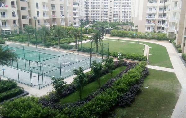 3 BHK Apartments best Price in Ajnara Daffodil Noida
