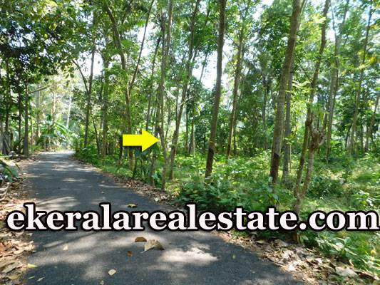 House Plot for Sale at Pappanamcode