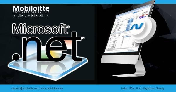 .NET Web Development Company In India