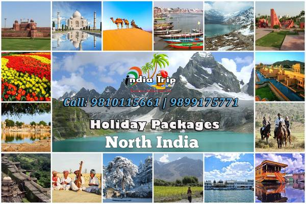India Holiday Tour Packages from Delhi India by