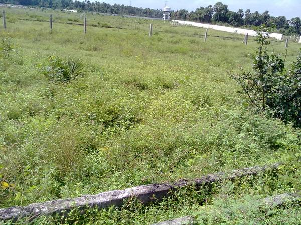 DTCP {200-Gjams} Residential Land for Sale in
