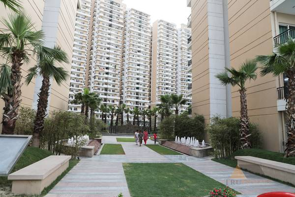 Ace City 3 BHK in Noida Extension at Affordable price