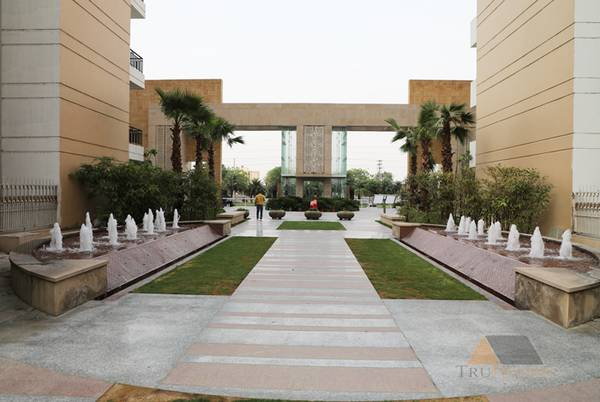 Ace City Luxurious and Comfortable Homes at Rs  PSF