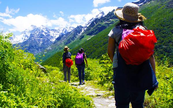 Valley of Flowers Trek Package