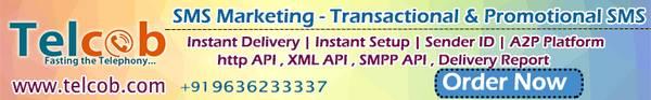 Bulk SMS | Bulk SMS Service |Bulk SMS Service in Gujarat |