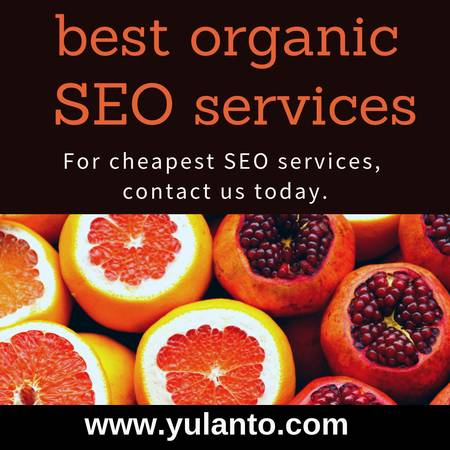 best organic SEO services in India at affordable prices $199