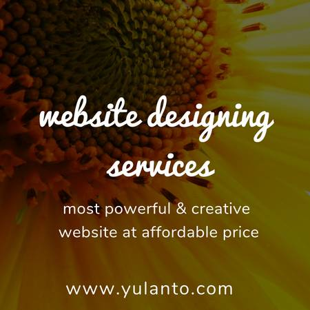 website designing services at lowest cost $199
