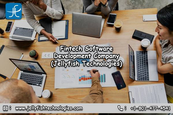 Are You Looking For Fintech Software Development Company?