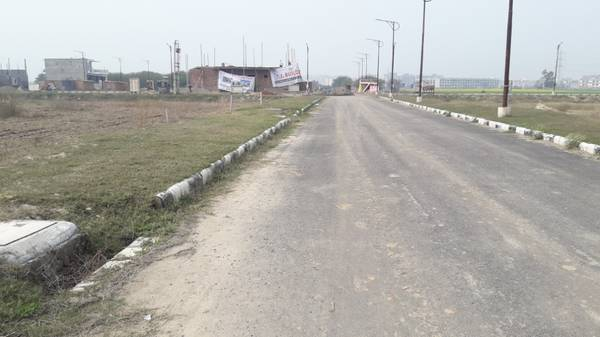 TDI City Sector 116 Mohali Plot 250 Yards