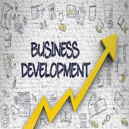 Business development training for Software Professionals