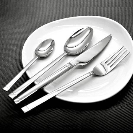 Buy Amefa Cutlery Set Online | India | Thinkitchen