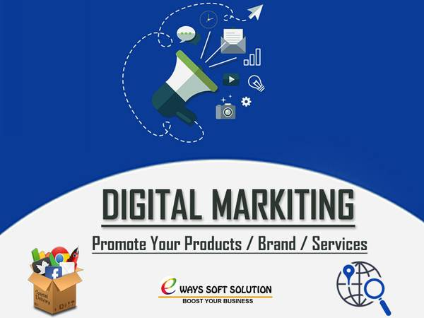Professional SEO Experts in Delhi   Digital Marketing