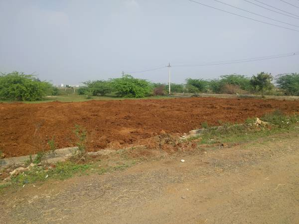 Plot for Sale in Chinnakakani near to Little vi